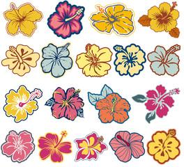 Hibiscus flowers vector icon set