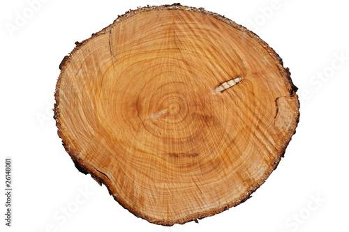 Tronc d'arbre  - Chauffage au bois