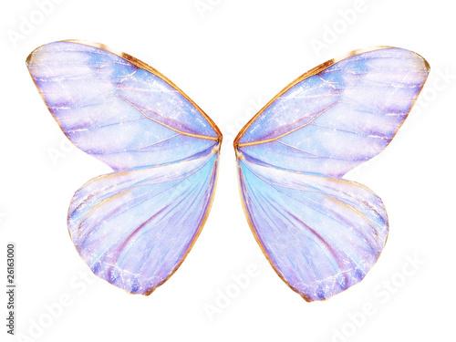 Fairy Wings - 26163000
