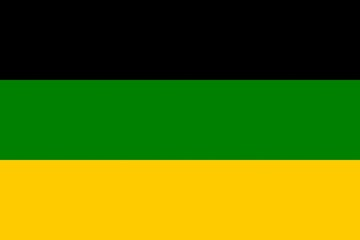 Drapeau-ANC:Officiel