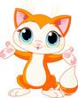 Kitten raising his hands