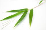 Fototapety Bambus mit Akupunkturnadeln