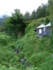 Cours d'eau et maison créole à Hell-Bourg
