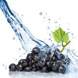 modré hroznové s striekajúcej vode izolovaných na bielom