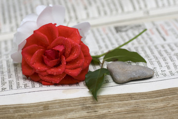 Stone heart with a red and white rose