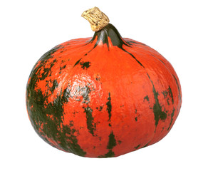 japanese pumpkin