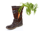 dutch tradition: shoe with carrot over white background