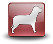 """Red 3D Effect Icon """"Dog / K9 / Canine"""""""
