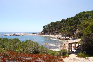 Cala de Roca Bona (Costa Brava, Girona)
