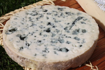 Fromage rond