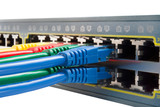 Multi Colored Network Cables Connected to Switch Isolated