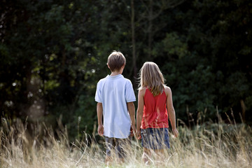 A young boy and girl walking through a field, rear view