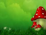 Fairy Fly Agaric