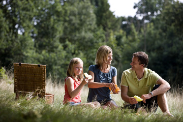 A family sitting on the grass, having a picnic