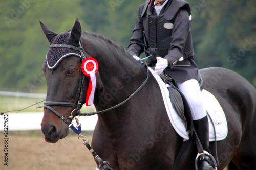 Dressurpferd mit Reiterin - 26279673