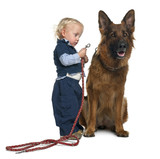 German shepherd dog with boy attaching leash poster