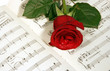 rose on   music note