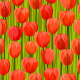 tulip flowers field seamless background