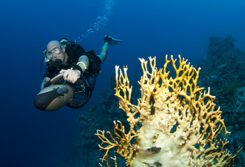 scuba diver on underwater scooter, DPV