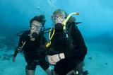 couple scuba dive together poster