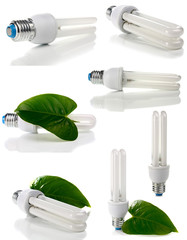 lightbulb and green leaf