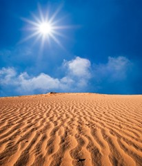 hot day in a sand desert