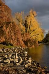 Herbststimmung am Zürichsee