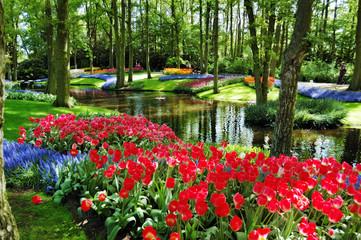 Beautiful sunny morning at the Keukenhof Gardens