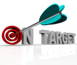 On Target - Arrow on Bulls-Eye