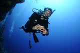 scuba diver on a wall dive poster