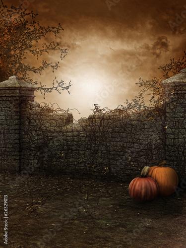 Halloween Background - 26329013