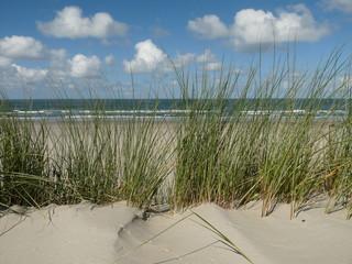 Ameland Nordsee Küste Strand Holland