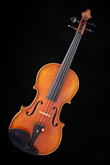 Complete Violin Viola Isolated on Black
