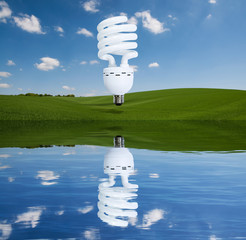 lightbulb reflection