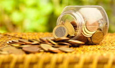 euro coin bottle