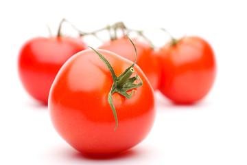 Tomato. Ver 2