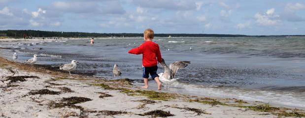 Kleines Mädchen am Strand mit Möwen