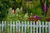 A  fence in a beautiful garden
