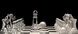 King Defeated by King in Chess Game