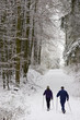 Nordic Walking im Winterwald