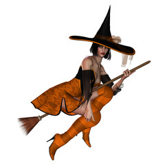 Witch On Broom 2