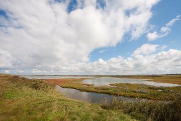 Dutch landscape behind the dike