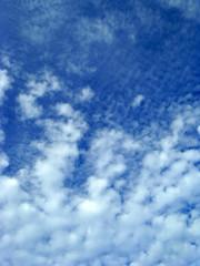 ciel bleu et nuages blancs fond
