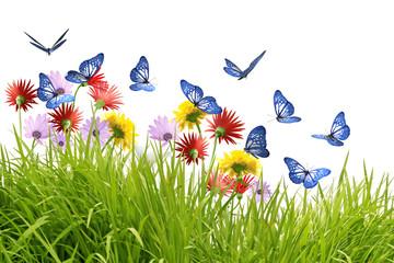 Groupe de papillons bleus butinant de belles fleurs