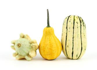 Two decorative gourds and a delicata squash