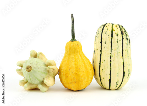 Two decorative gourds and a delicata squash