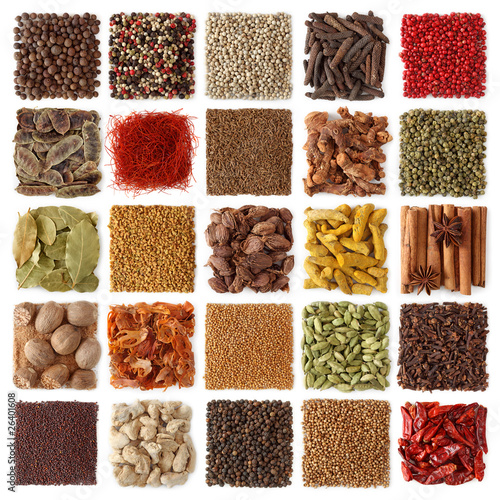 Foto op Canvas Kruiderij Indian spices collection
