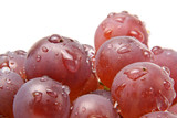 Fototapety Red grapes with waterdrops