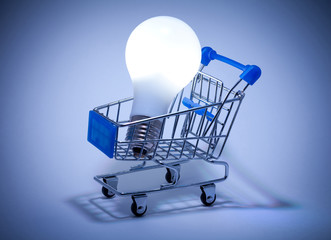Buy the Light. Shopping cart with light bulb.