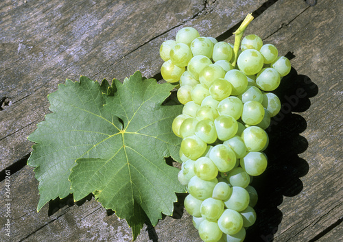 leaf and grapes of white wine on a wooden table